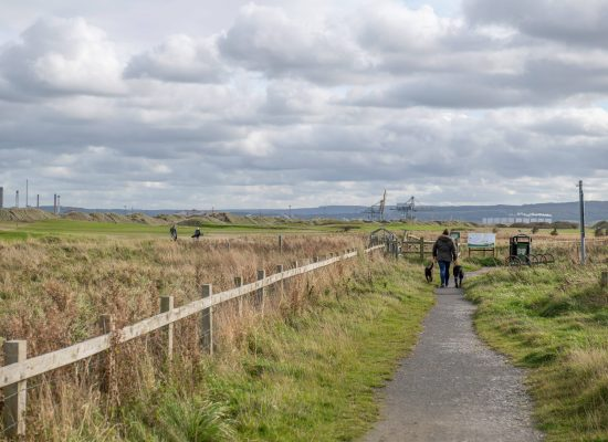 Teesmouth Nature Reserve - MRes